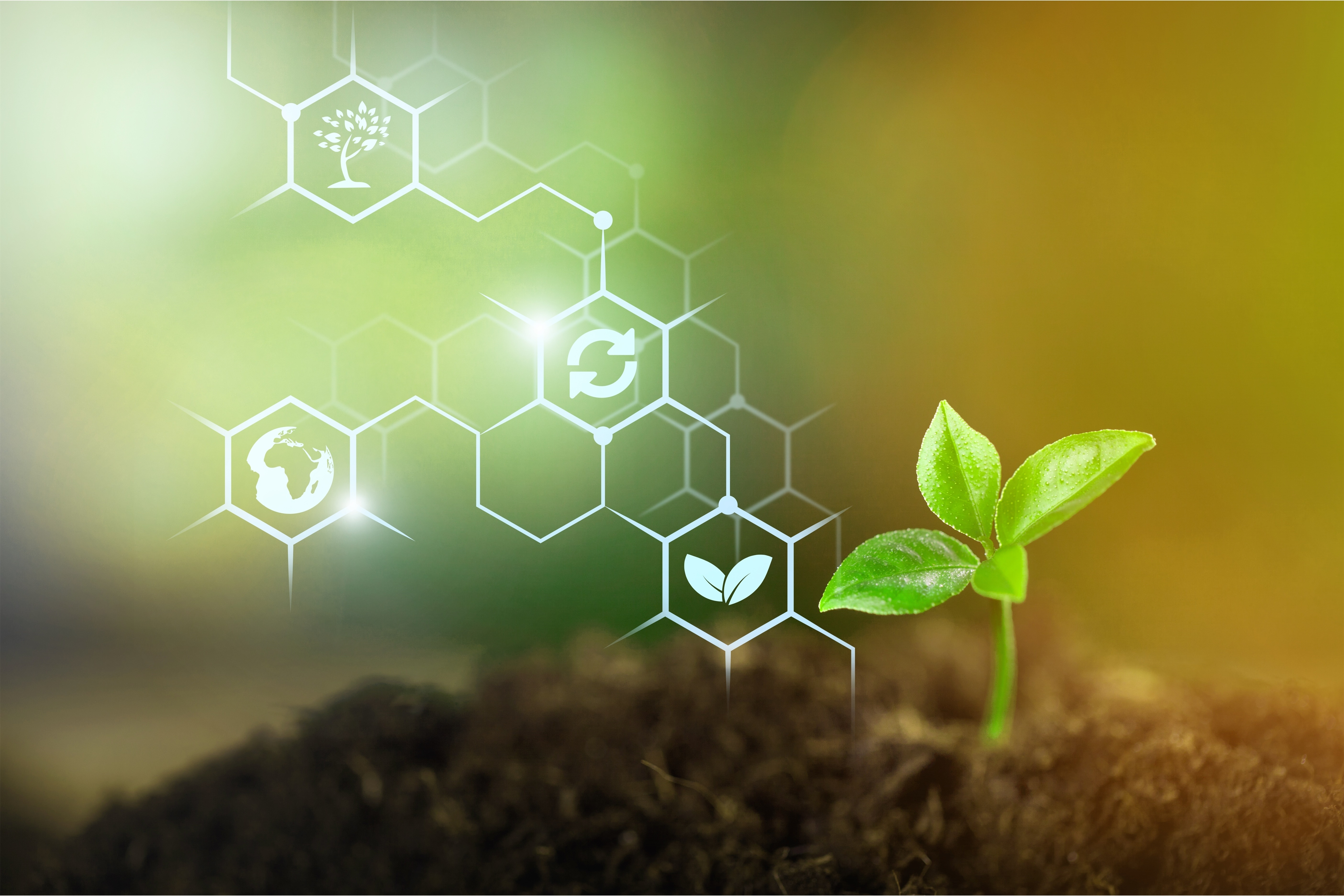 Using Nature to Build  solutions